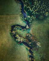 The river stream in the autumn forest aerial view