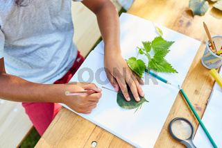 Kinder zeichnen Pflanzen im kreativen Ferienkurs