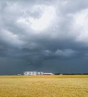 Field with silos under cloudy sky