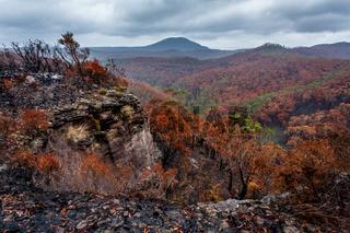 Landscape views after bush fires in Blue Mountains Australia