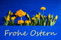 Spring Flowers, Tulip, Narcissus, Text Frohe Ostern Means Happy Easter