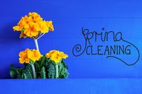 Yellow Spring Flowers, Text Spring Cleaning, Blue Background