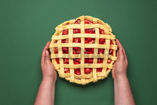 Uncooked fruit cake top view in a woman hands