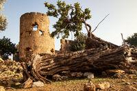 Festung Loutro - Kreta
