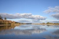 Blick auf die Oder bei Lebus