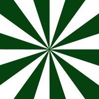 Rays dark green and white