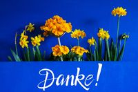 Spring Flowers, Narcissus, Text Danke Means Thank You