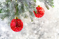 Christmas card with red balls on a spruce branch.