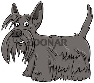 Scottish Terrier purebred dog cartoon illustration