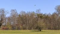 Schopflocher Moorlandschaft, Schwäbische Alb