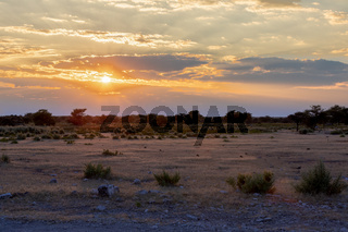 landscape namibia game reserve, africa wilderness