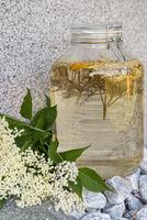 Holunderblütensirup selbst gemacht - Saft gesund und natürlich