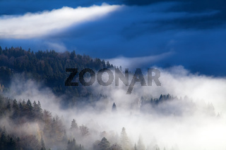 morning fog in mountains