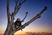 Schimpansenfigur auf einem Baum