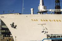 Cap San Diego Museums Schiff Hamburger Hafen