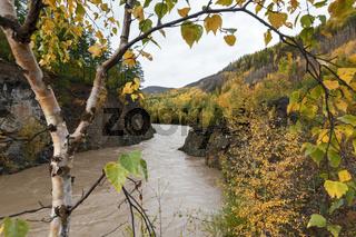 Autumn landscape: river flowing among roky mountain