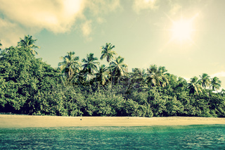 Tropical beach scenery with palm trees