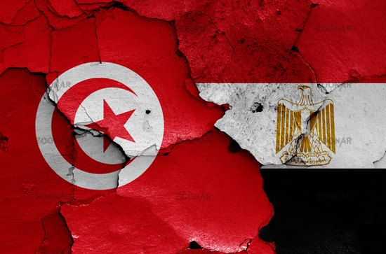 flags of Tunisia and Egypt painted on cracked wall