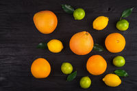 grapefruit, oranges, lemons and lime on the brown table. background