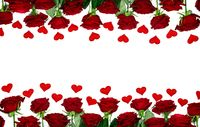 Red roses and the paper hearts