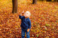 Photo of little boy in fall forest