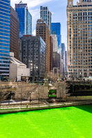 Dyeing River Chicago St' Partick Day.