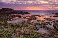 Coastal dawn skies at low tide exposing the rocky reef