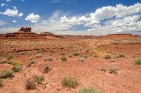 Scenic desert landscape with red mesas in the Valley of the Gods in Utah, United States