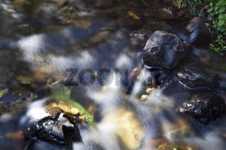 IS_Wasser_06.tif