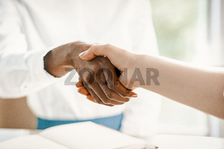 Handshake Of Two Business Lady, Close Up