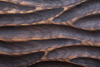 Old grungy rustic burning wood cutting board surface texture