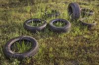 Reifen wurden in der Natur entsorgt...