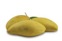 Ripe sweet mangoes with leaf on white background