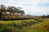 Sugar Cane Train in Queensland Australia