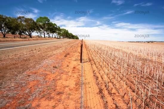 south australia agriculture dry field