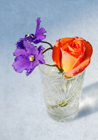 Rose and violet flowers in crystal glass on grange background