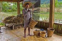 Junger Mann zeigt Körbe für die Aufbewahrung und denTransport von Reis, near Luang Prabang, Laos
