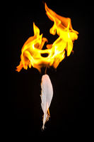 Feather and Flame #4