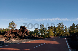 Landstraße durch den Parque National de Corona Forestal, Teide-Nationalpark, Teneriffa, Kanaren, Spanien, Europa