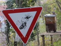 Verkehrsschild Bienen Vorfahrt gewähren im Bergzoo Halle (Saale)