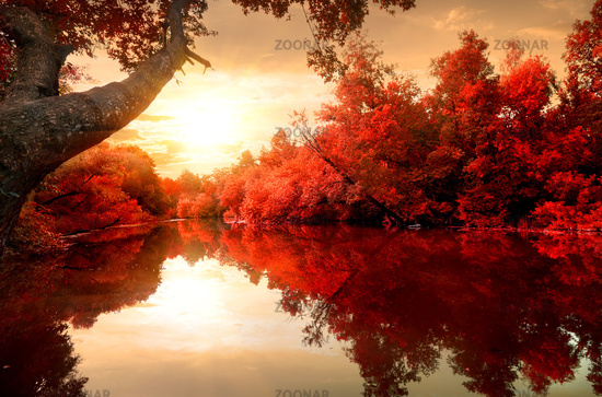 Red autumn on river