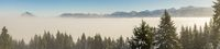 Amazing winter panoramic view to snowy Mountain Range above inversion fog clouds with forest trees. Early morning sunrise view from Oftersschwanger Horn to Gruenten and Allgauer Alps.