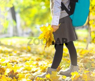 Little schooler girl in the autumn park