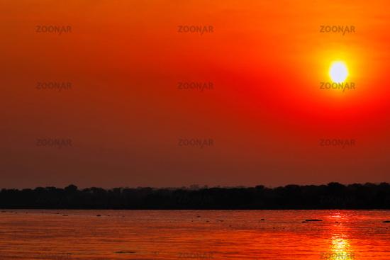 Sonnenuntergang am Nil im Murchison Falls Nationalpark Uganda   Sunset at the Nile at Murchison Falls National Park Uganda
