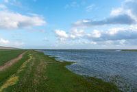 Küstenlandschaft bei Westerhever | Coastal landscape near Westerhever
