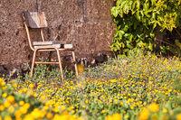 Dieser Stuhl auf einem Lost Place scheint zum Ausruhen einzuladen