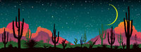 Night starry sky over the mexican desert