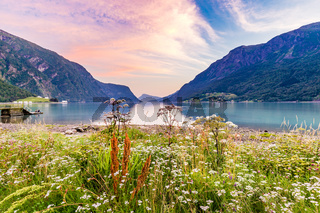 Sognefjord panorama from Skjolden Norway