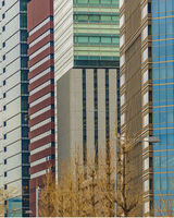 Modern Tall Buildings, Chiyoda District, Tokyo, Japan