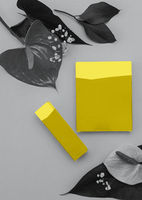 Colors of the year 2021: Ultimate Gray and Illuminating yellow concept